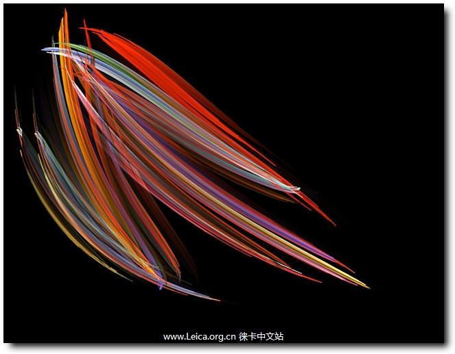 Stinger用高对比的艳丽色彩来描绘硅藻的形态,从而创造出一种别具特色的微距艺术。