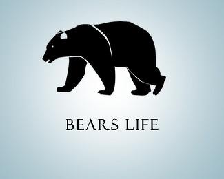 20款熊题材标志设计欣赏