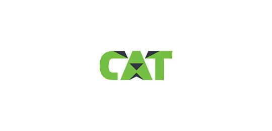 猫科动物标志设计字体