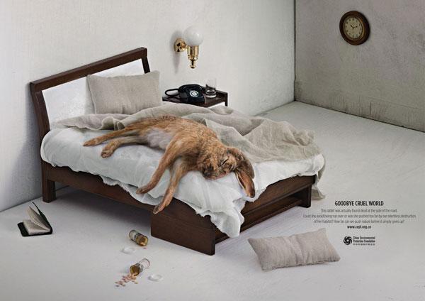 环境保护基金会广告欣赏