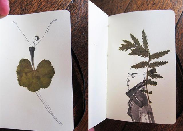 千姿百态的树叶作画