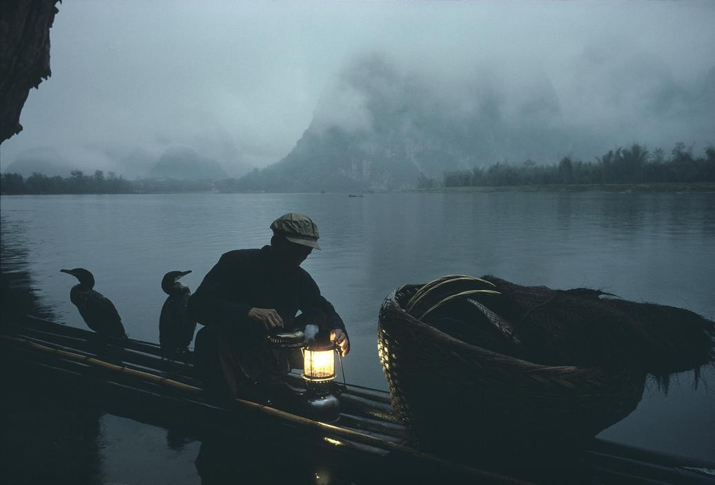 1979年,中国安徽省黄山市,鸬鹚捕鱼的场景