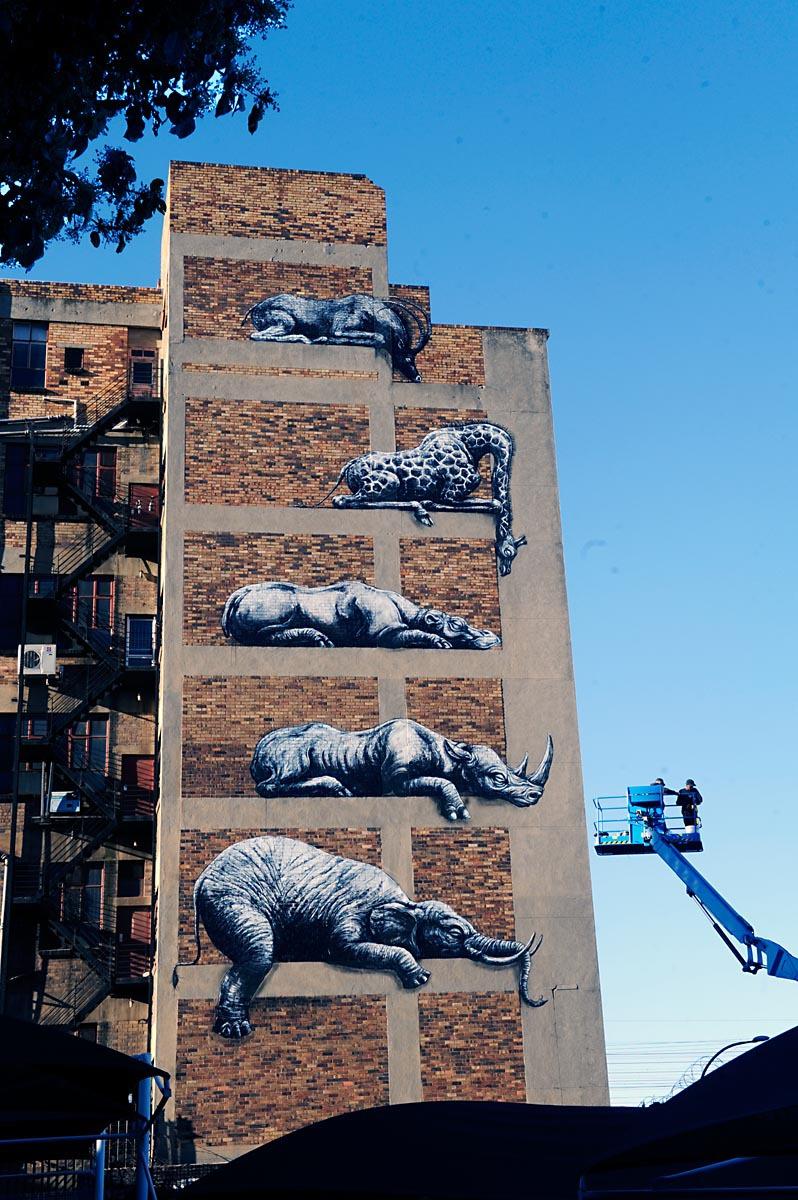 墙壁涂鸦――非洲大迁徙