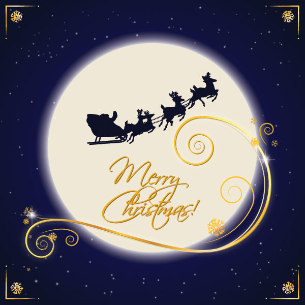 圣诞之夜贺卡矢量素材