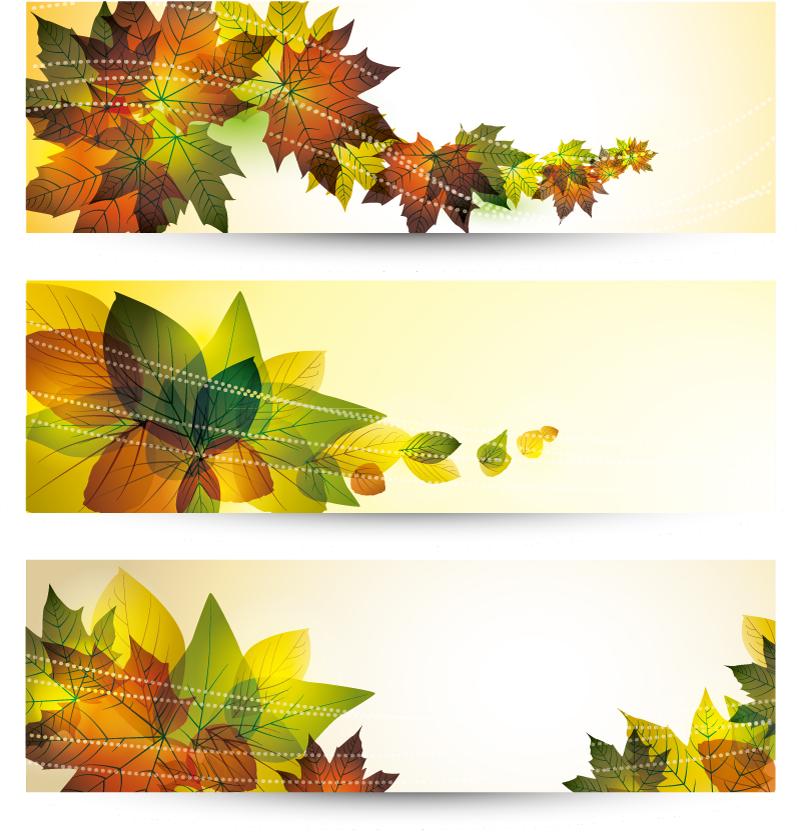 精美叶子背景矢量素材
