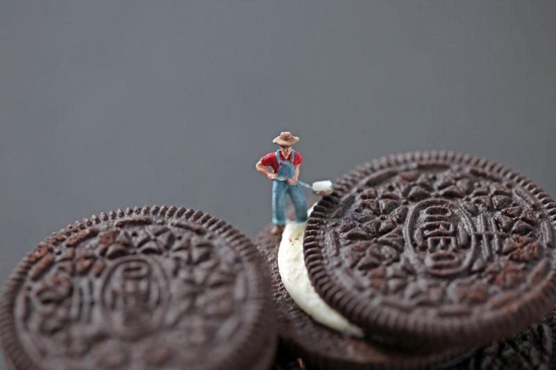 饼干创意摄影作品