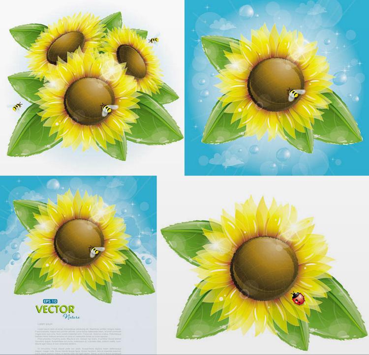 精美葵花与蜜蜂矢量素材