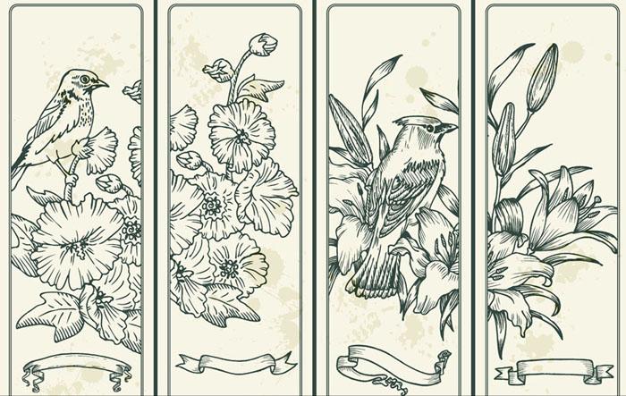 线描花鸟插画设计矢量素材