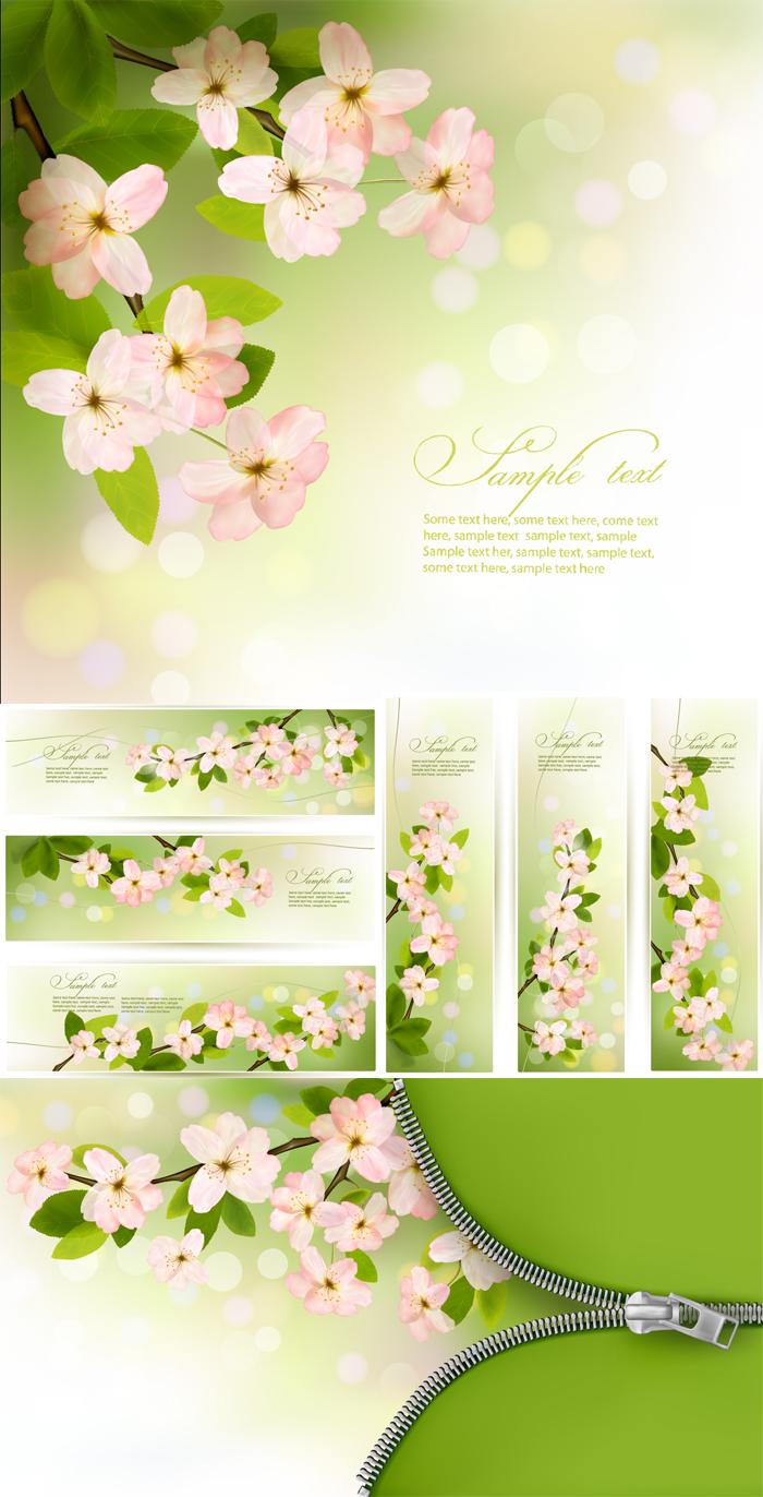 清新春季花卉背景矢量素材