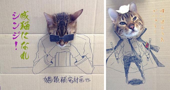 薄瓜瓜猫咪涂鸦
