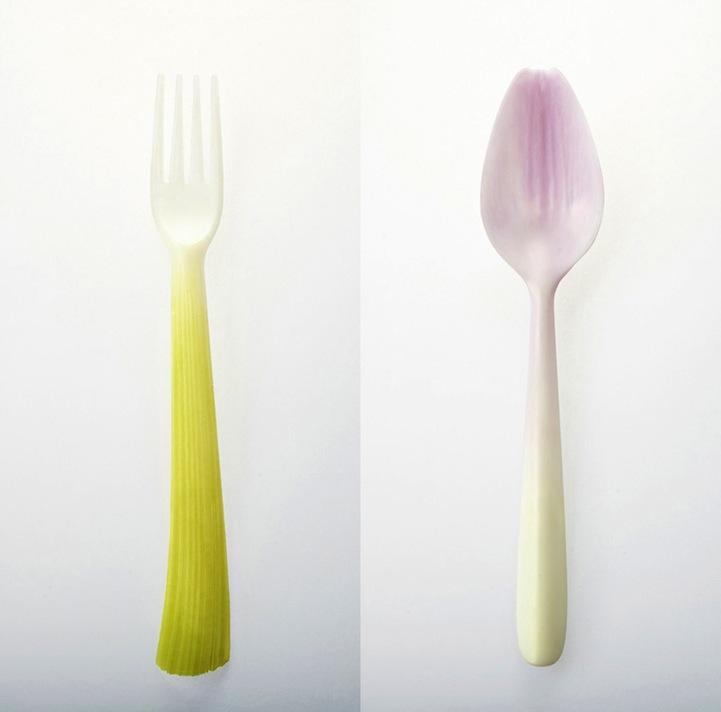 蔬菜餐具设计