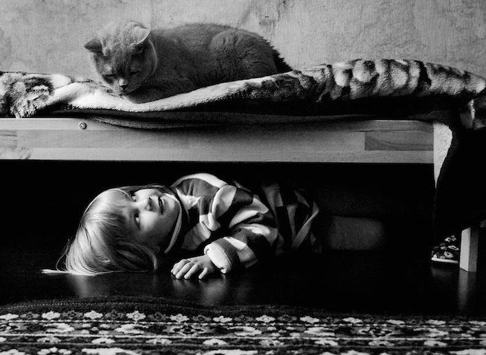 猫和女孩的友谊