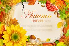 精美秋季树叶背景矢量素材