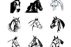 12款马头设计矢量素材