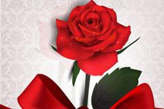 精美绸带玫瑰邀请卡矢量素材