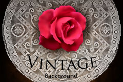 复古玫瑰蕾丝背景矢量素材