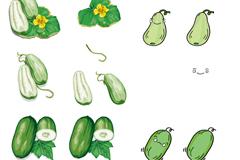 可爱的卡通黄瓜设计矢量素材