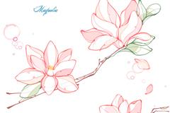 彩绘木兰花背景矢量素材