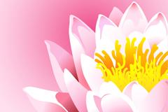 彩绘莲花设计矢量素材