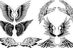 6款创意手绘翅膀设计矢量素材