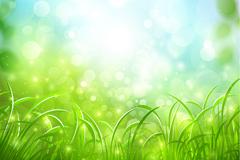 梦幻绿色草地背景矢量素材
