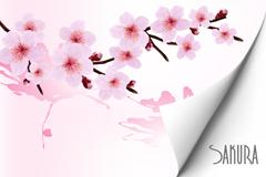 美丽樱花背景矢量素材