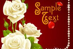 白色玫瑰花与珍珠背景矢量素材
