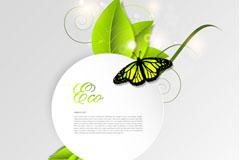 精美绿叶与蝴蝶背景矢量素材