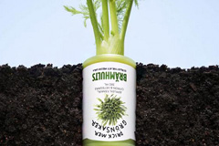 Bramhults果蔬饮料创意广告