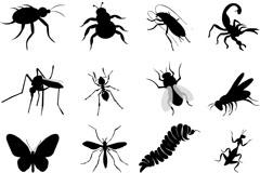 16种昆虫剪影矢量素材