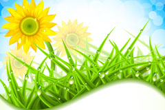 向日葵与草地背景矢量素材