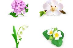 6款精美花卉设计矢量素材