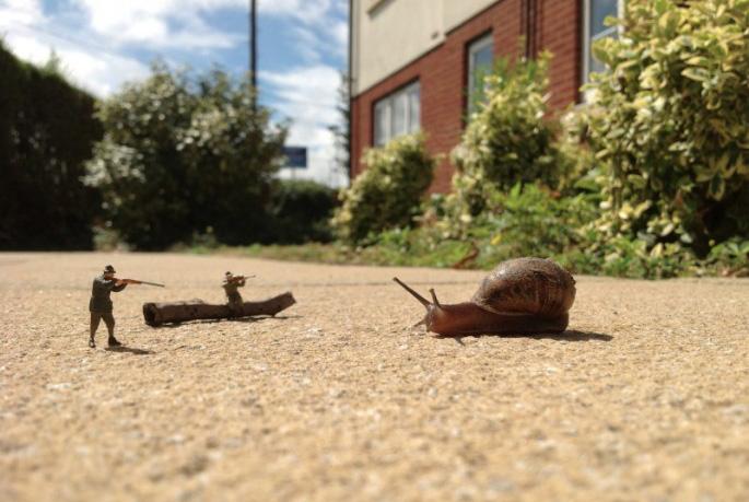 微缩世界里的人和蜗牛