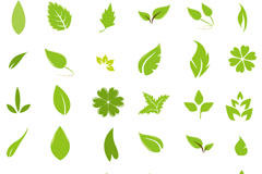 36款绿叶设计矢量素材
