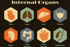 12个复古内脏器官图标设计矢量素材