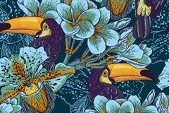 兰花与大嘴鸟背景矢量素材