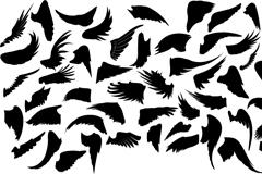 黑色翅膀设计矢量素材