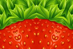 夏季草莓背景矢量素材