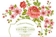 红色玫瑰花杏花卡片矢量素材
