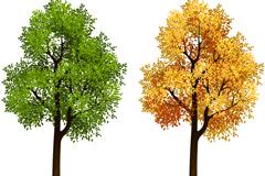 夏秋树木设计矢量素材
