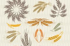 12款彩色麦穗设计矢量素材