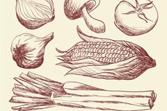 7款手绘蔬菜设计矢量素材