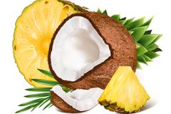 切开的椰子与凤梨设计矢量素材