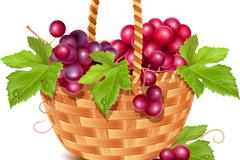 水果篮里的葡萄矢量素材