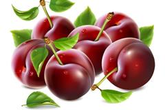 美味红樱桃设计矢量素材