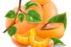 鲜美水蜜桃设计矢量素材