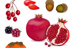 7款水果与坚果设计矢量素材