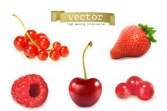 9款多汁水果设计矢量素材