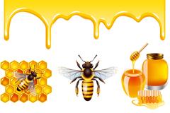 蜂蜜与蜜蜂设计矢量素材