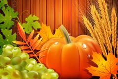 秋季丰收农作物背景矢量素材
